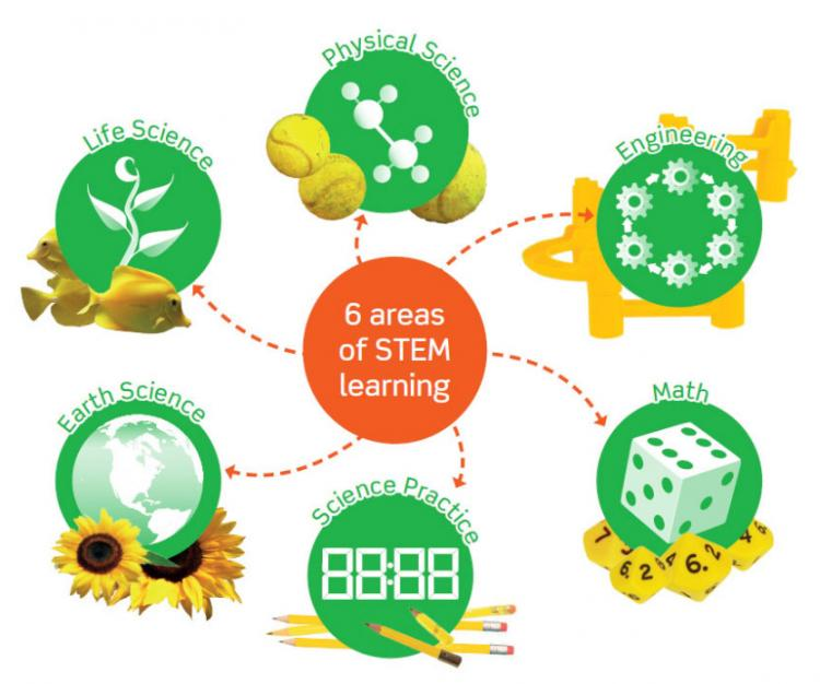 Teach STEM skills to elementary school students